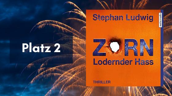 """Platz 2: """"Zorn: Lodernder Hass"""" von Stephan Ludwig"""