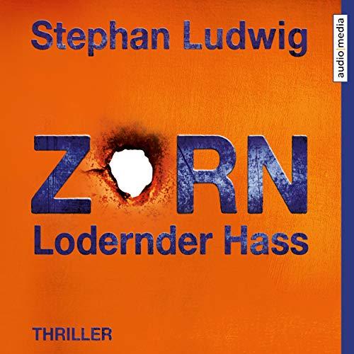 Zorn: Lodernder Hass von Stephan Ludwig